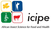 Logo des International Centre of Insect Physiology and Ecology (icipe), Kenya